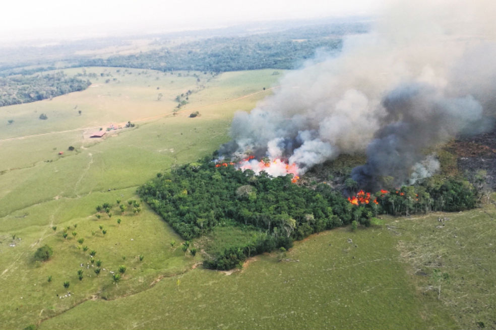 La mala hora de la Amazonia